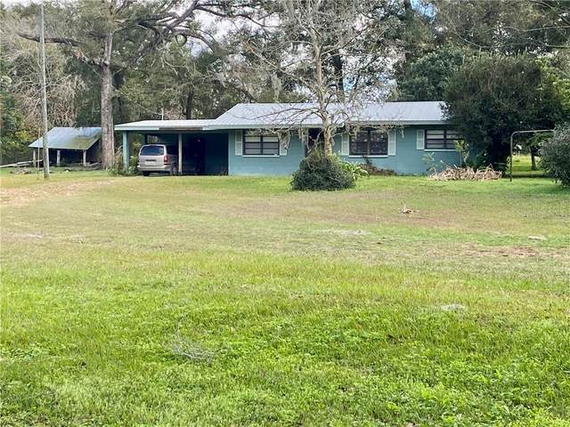 11812 and 11818 Duck Lake Canal Road, Dade City, FL 33525 (MLS #T3281174) :: Your Florida House Team