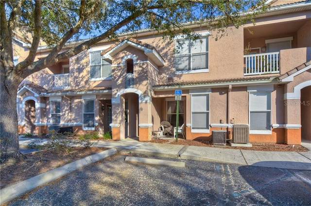 17965 Villa Creek Drive, Tampa, FL 33647 (MLS #T3281239) :: Rabell Realty Group