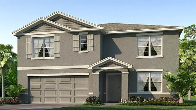 12218 Kingsley Trail, Parrish, FL 34219 (MLS #T3281533) :: Premier Home Experts
