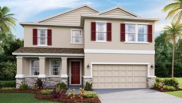 16445 Woodside Glen, Parrish, FL 34219 (MLS #T3281630) :: Team Pepka