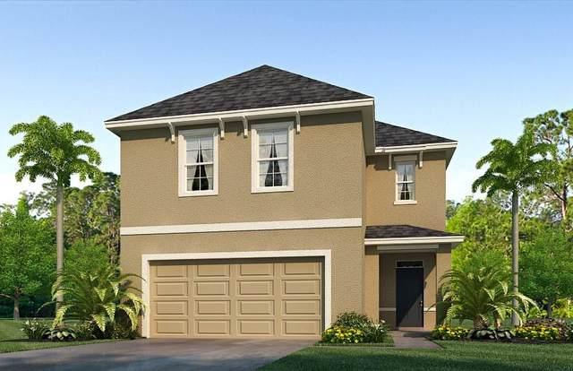 32685 Canyonlands Drive, Wesley Chapel, FL 33543 (MLS #T3281713) :: Everlane Realty