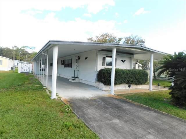 5508 Barbara Street, Zephyrhills, FL 33542 (MLS #T3281733) :: Zarghami Group