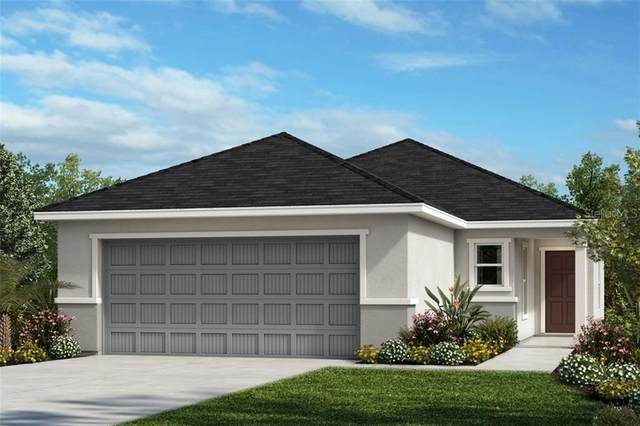 11227 Gold Compass Street, Gibsonton, FL 33534 (MLS #T3281816) :: Dalton Wade Real Estate Group