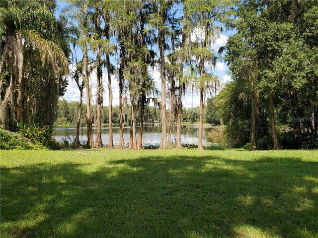 1101 Lake Charles Circle, Lutz, FL 33548 (MLS #T3281988) :: Griffin Group