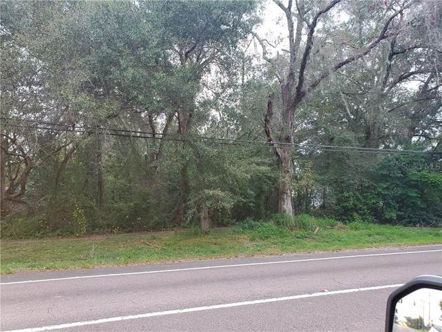 2508 Lithia Pinecrest Road, Valrico, FL 33596 (MLS #T3282094) :: The Nathan Bangs Group