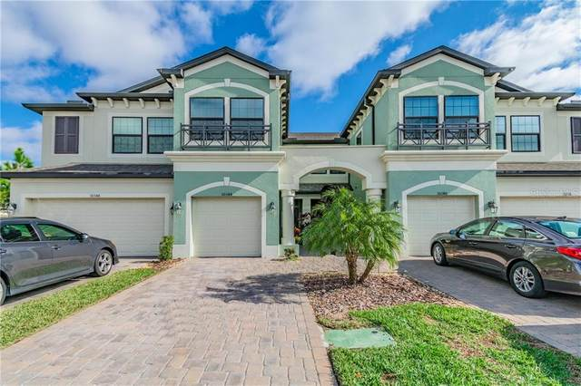 30344 Southwell Lane, Wesley Chapel, FL 33543 (MLS #T3282269) :: Everlane Realty