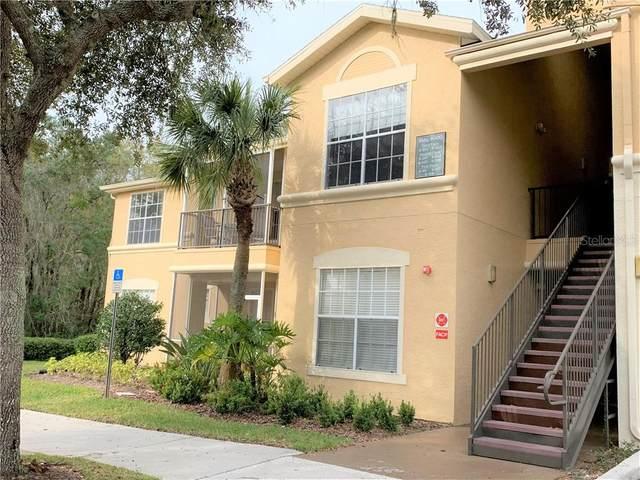 5125 Palm Springs Boulevard #6201, Tampa, FL 33647 (MLS #T3282665) :: Dalton Wade Real Estate Group