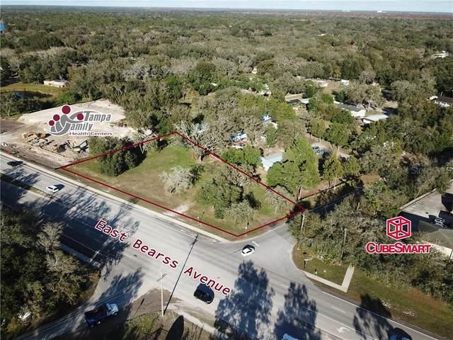 Bearss Avenue, Lutz, FL 33549 (MLS #T3282881) :: Griffin Group
