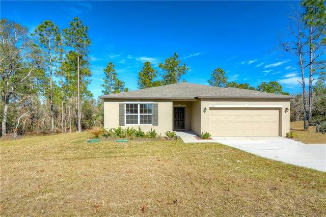 13221 Roxy Avenue, Brooksville, FL 34614 (MLS #T3282999) :: Lockhart & Walseth Team, Realtors