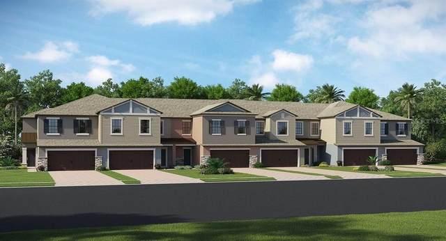 1401 White Fox Run, Lutz, FL 33559 (MLS #T3283314) :: Rabell Realty Group