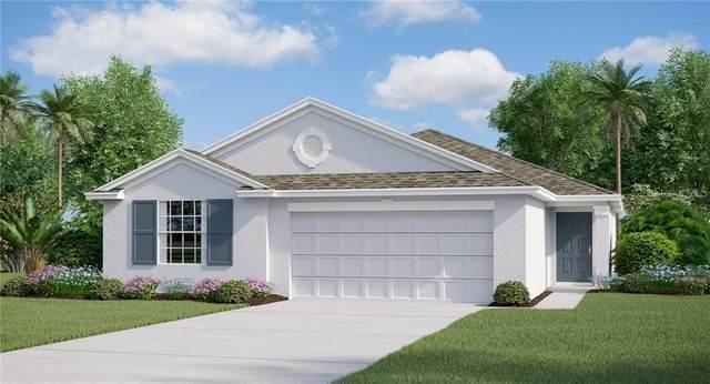 307 Macarthur Street, Bartow, FL 33830 (MLS #T3283329) :: Pepine Realty