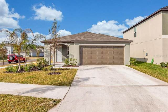 807 Nutmeg Spice Place E, Ruskin, FL 33570 (MLS #T3283456) :: The Duncan Duo Team