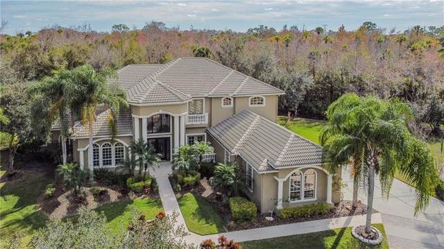 5016 Givendale Lane, Tampa, FL 33647 (MLS #T3283533) :: Pepine Realty