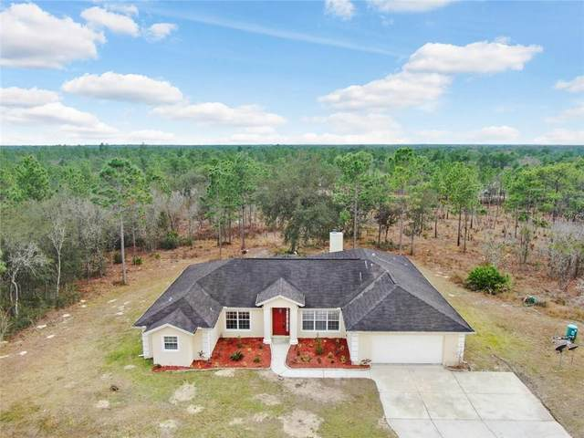 12384 SW 87TH Street, Dunnellon, FL 34432 (MLS #T3283679) :: Griffin Group