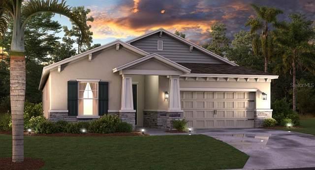 1355 Lassen Street, Davenport, FL 33837 (MLS #T3283990) :: Visionary Properties Inc