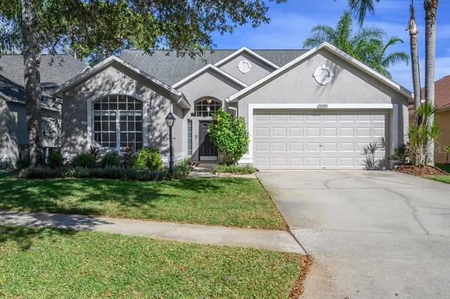 12405 Glenfield Avenue, Tampa, FL 33626 (MLS #T3284153) :: Team Bohannon Keller Williams, Tampa Properties