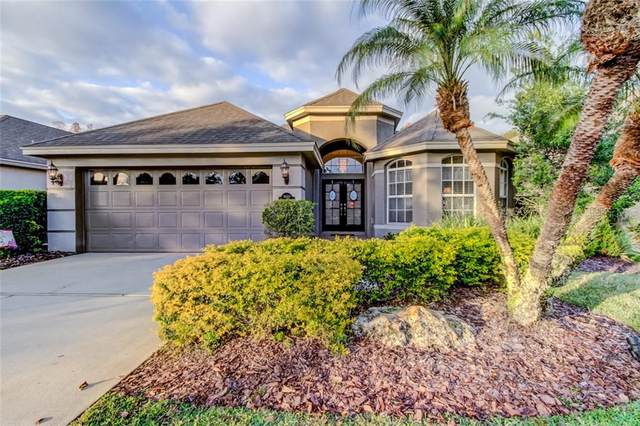 9660 Gretna Green Drive, Tampa, FL 33626 (MLS #T3284169) :: The Duncan Duo Team