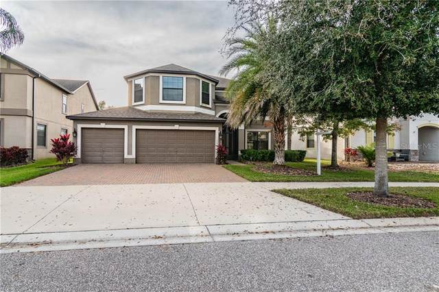 10045 Smarty Jones Drive, Ruskin, FL 33573 (MLS #T3284255) :: Everlane Realty