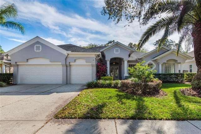 17521 Edinburgh Drive, Tampa, FL 33647 (MLS #T3284378) :: Dalton Wade Real Estate Group