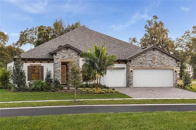 4613 Ridgewood Estates Avenue, Valrico, FL 33596 (MLS #T3284394) :: Dalton Wade Real Estate Group