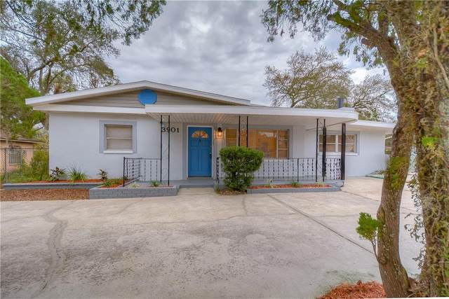 3901 E Osborne Avenue, Tampa, FL 33610 (MLS #T3284461) :: Premier Home Experts