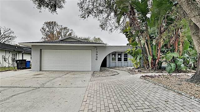 13936 Farmington Boulevard, Tampa, FL 33625 (MLS #T3284474) :: Everlane Realty