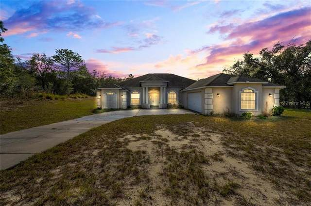 16508 Dalberg Drive, Spring Hill, FL 34610 (MLS #T3284557) :: Keller Williams Realty Peace River Partners