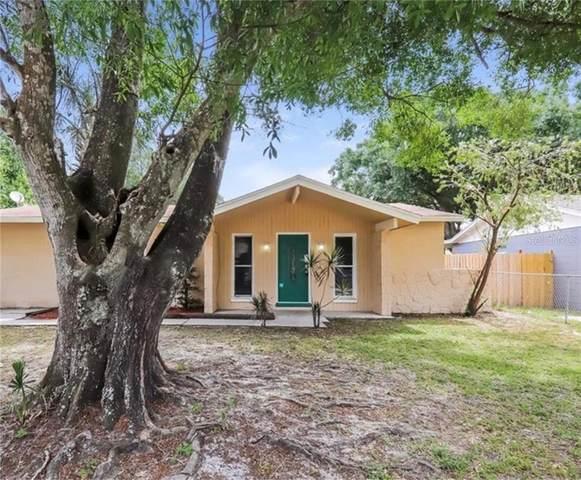 3220 Deerfield Drive, Tampa, FL 33619 (MLS #T3284609) :: Everlane Realty