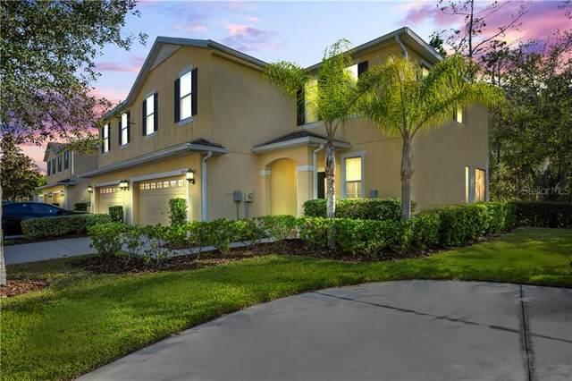 20513 Grand Vista Lane, Tampa, FL 33647 (MLS #T3284631) :: Dalton Wade Real Estate Group