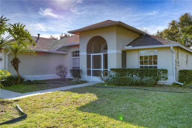 1012 Standing Reed Place, Wesley Chapel, FL 33543 (MLS #T3284643) :: The Light Team
