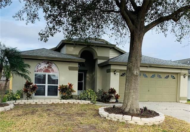 1505 Dawley Court, Brandon, FL 33511 (MLS #T3284645) :: Dalton Wade Real Estate Group