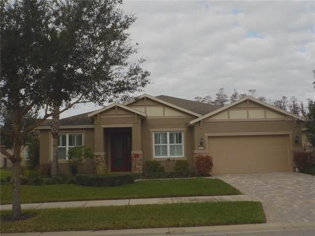 19416 Butterwood Lane, Lutz, FL 33558 (MLS #T3284654) :: Heckler Realty