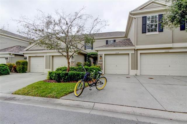 11224 Windsor Place Circle, Tampa, FL 33626 (MLS #T3284678) :: Griffin Group