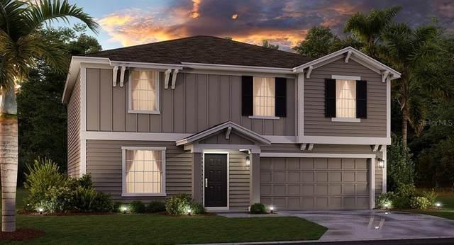 5532 Limestone Street, Mount Dora, FL 32757 (MLS #T3284683) :: Team Buky