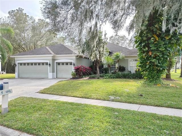 5911 Cherry Oak Drive, Valrico, FL 33596 (MLS #T3284693) :: Dalton Wade Real Estate Group