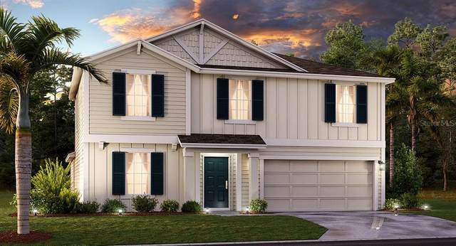 5526 Limestone Street, Mount Dora, FL 32757 (MLS #T3284744) :: Visionary Properties Inc