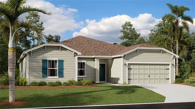5711 Alenlon Way, Mount Dora, FL 32757 (MLS #T3284757) :: Bob Paulson with Vylla Home