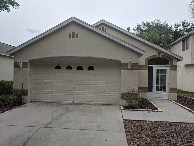 5810 Meadowpark Place, Lithia, FL 33547 (MLS #T3284758) :: Dalton Wade Real Estate Group
