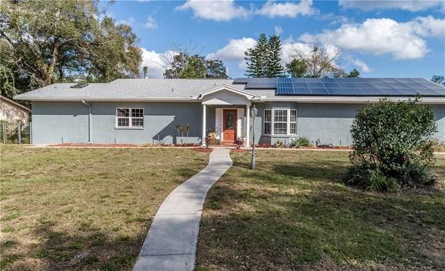 11009 Saginaw Drive, Temple Terrace, FL 33617 (MLS #T3284765) :: The Heidi Schrock Team