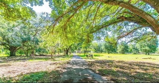 5746 Frontier Drive, Zephyrhills, FL 33540 (MLS #T3284788) :: Young Real Estate