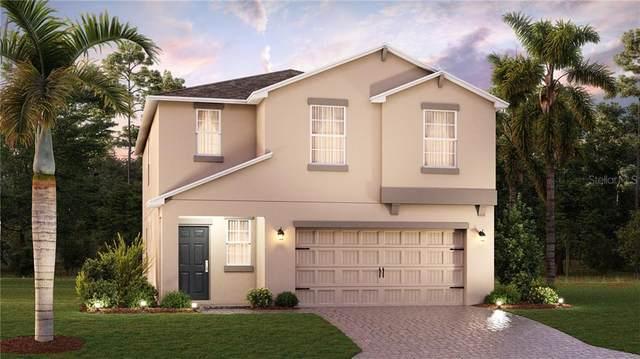 173 White Horse Way, Groveland, FL 34736 (MLS #T3284795) :: Dalton Wade Real Estate Group