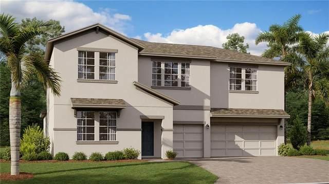 67 White Horse Way, Groveland, FL 34736 (MLS #T3284800) :: Dalton Wade Real Estate Group