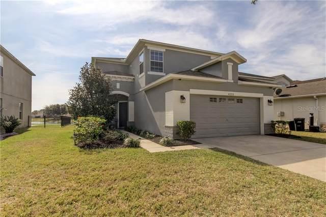 4223 Warwick Hills Drive, Wesley Chapel, FL 33543 (MLS #T3284859) :: Everlane Realty