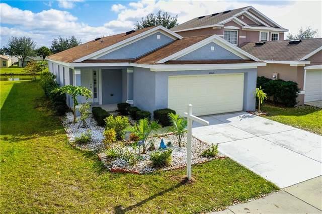 11316 Palm Island Avenue, Riverview, FL 33569 (MLS #T3284875) :: Dalton Wade Real Estate Group