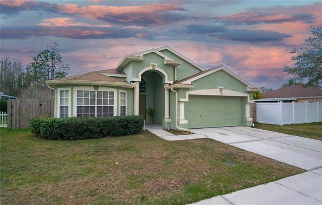 1229 Timber Trace Dr, Wesley Chapel, FL 33543 (MLS #T3284893) :: The Light Team