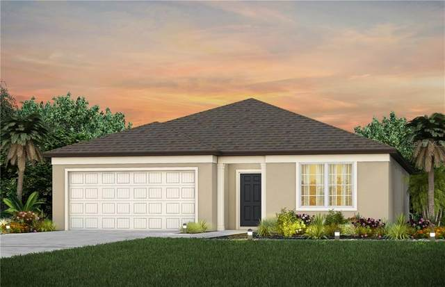 1005 Swaying Sawgrass Ave, Ruskin, FL 33570 (MLS #T3284939) :: CGY Realty
