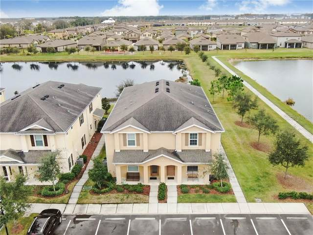 9305 American Hickory Lane, Riverview, FL 33578 (MLS #T3285000) :: The Hesse Team