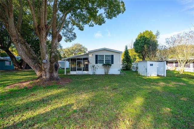 4425 Areca Palm Drive, Zephyrhills, FL 33541 (MLS #T3285017) :: Griffin Group