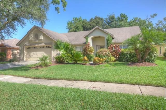 9224 Dayflower Drive, Tampa, FL 33647 (MLS #T3285051) :: Dalton Wade Real Estate Group