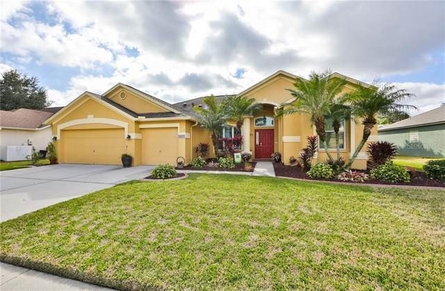 4425 Gentrice Drive, Valrico, FL 33596 (MLS #T3285073) :: Dalton Wade Real Estate Group